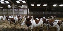 Les exploitations laitières ayant recours aux pâturages seraient plus écologiques et plus économiques selon une récente étude.