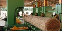 Filière Bois Gabon Industrie Fôret