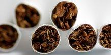 Enquete de l'autorite de la concurrence dans le tabac